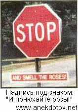 Остановитесь и понюхайте розы