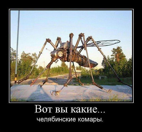 Челябинские комары