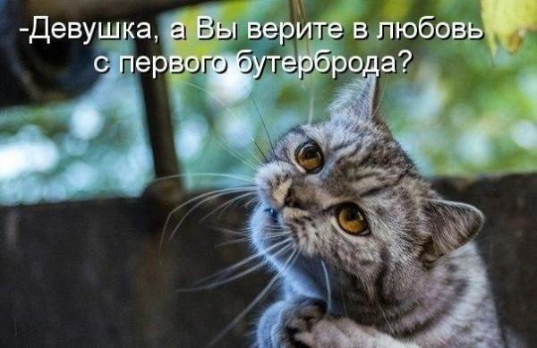 А вы верите?