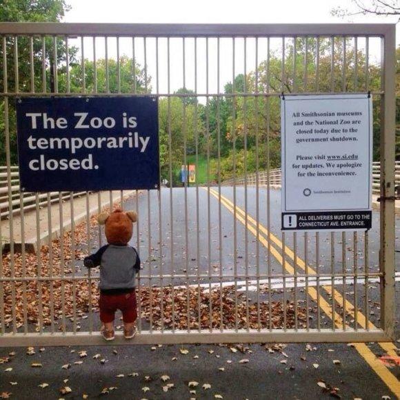 Зоопарк закрыт