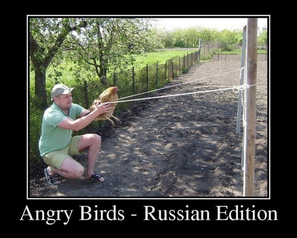 Angry Birds - Russian Edition