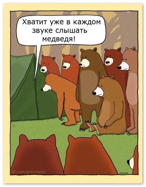 Нет там никаких медведей!