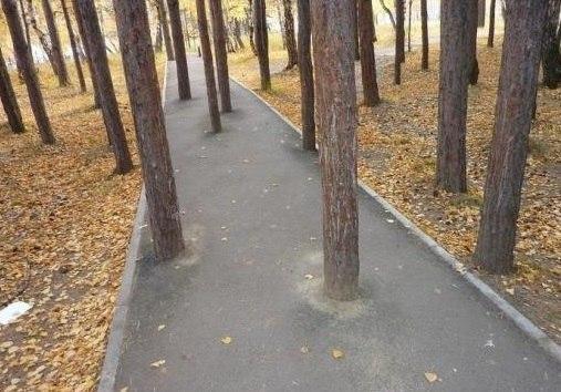 Экологичная дорога