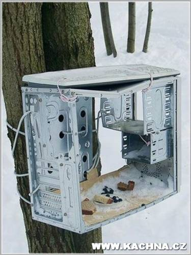 Электронно-вычислительная кормушка