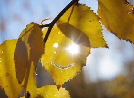 Улыбнись осени