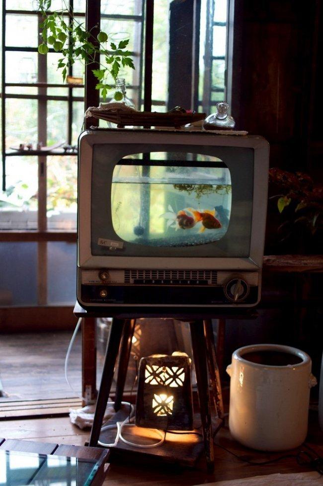 Экологическое TV